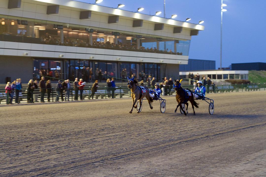 Verzekeringscup rijders paardenkoers