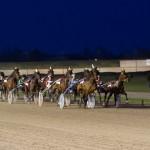 Deelnemers Verzekeringscup paardenkoers
