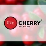 Branding Miss Cherry