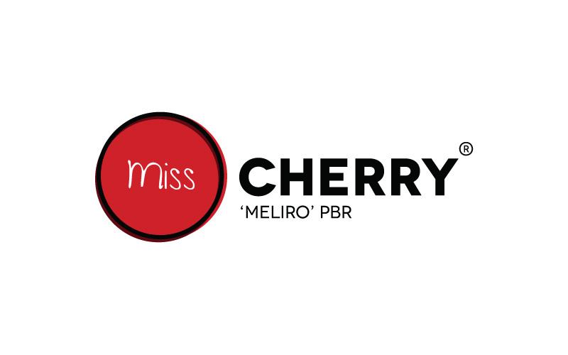 Miss Cherry logo