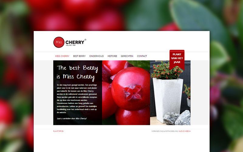 Miss Cherry website