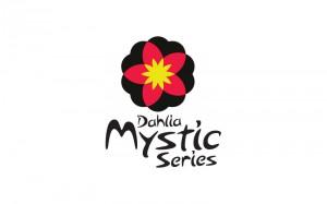 Branding Mystic Dahlia
