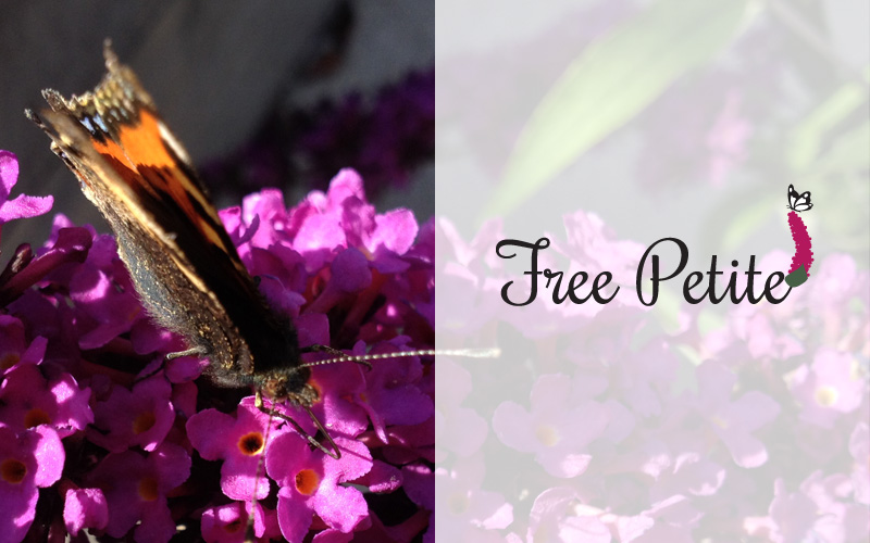 Free Petite branding en identiteit